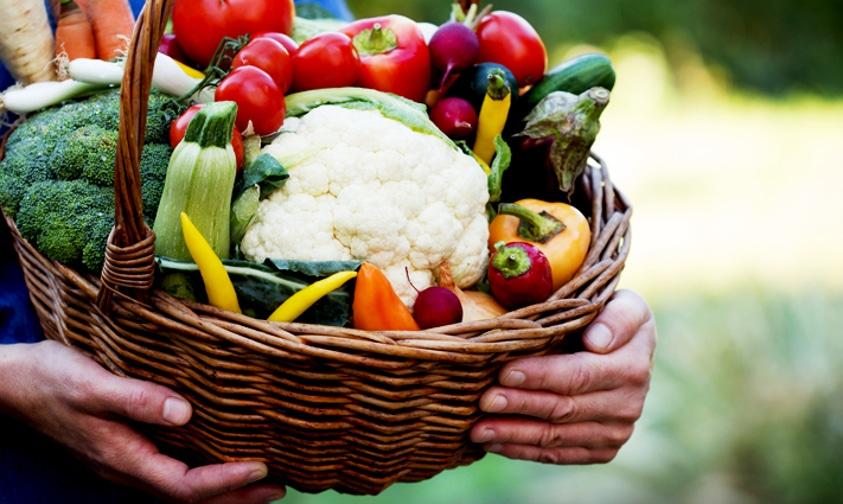 Agroecologia, produtos orgânicos e agricultura familiar
