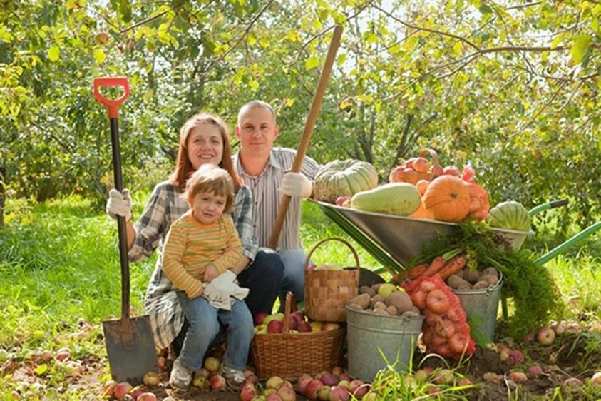 Empreendedorismo Rural e Sistemas Agroflorestais