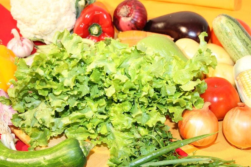 Legumes e verduras saudaveis e organicos por epoca do ano