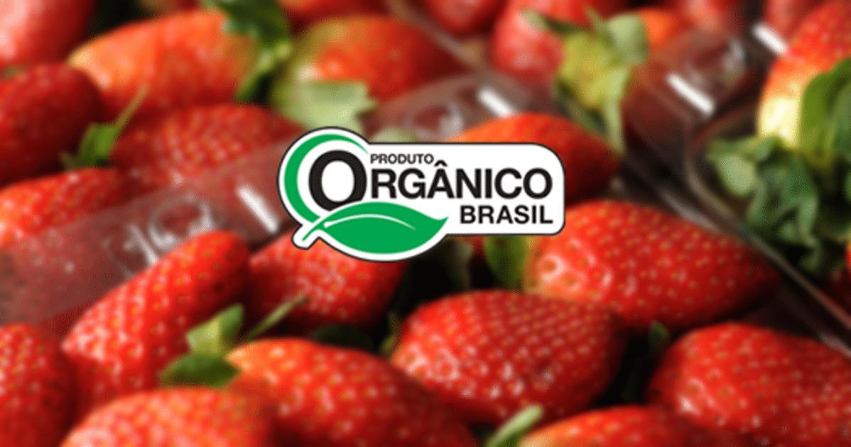 Certificação Orgânica Selo produtor organico