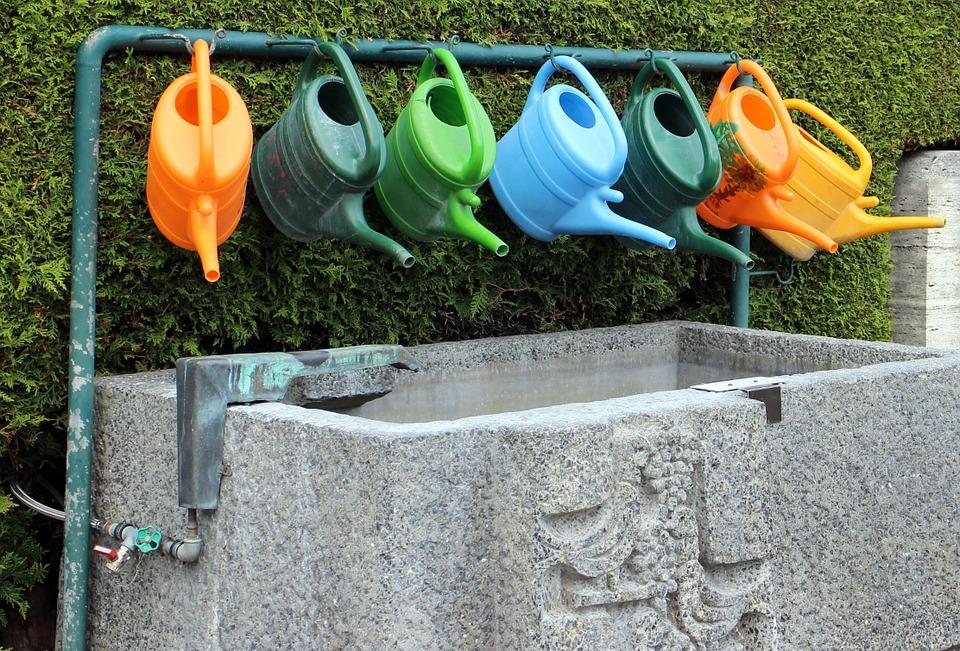Irrigação para pomares