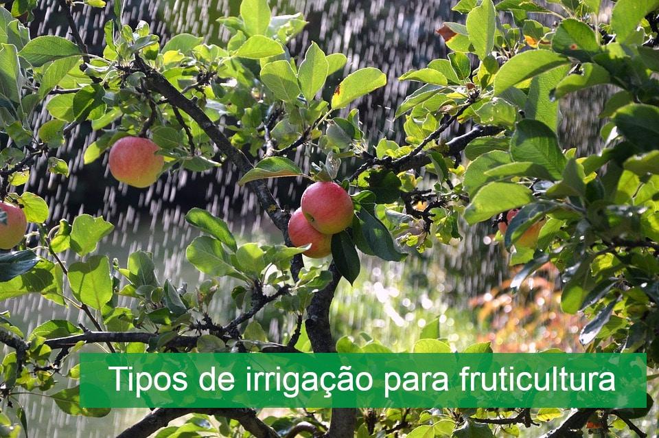Tipos de irrigação para fruticultura