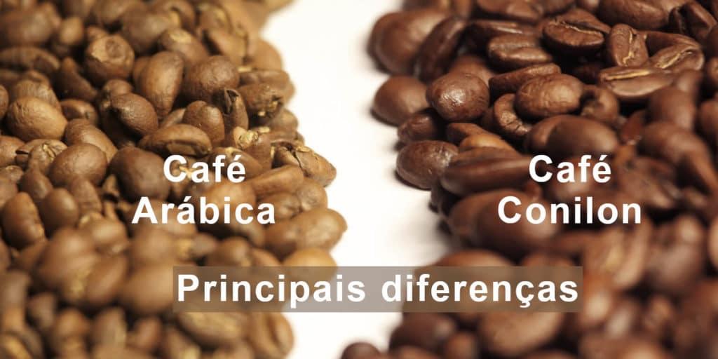 Café arábica e Café Conilon suas principais diferenças