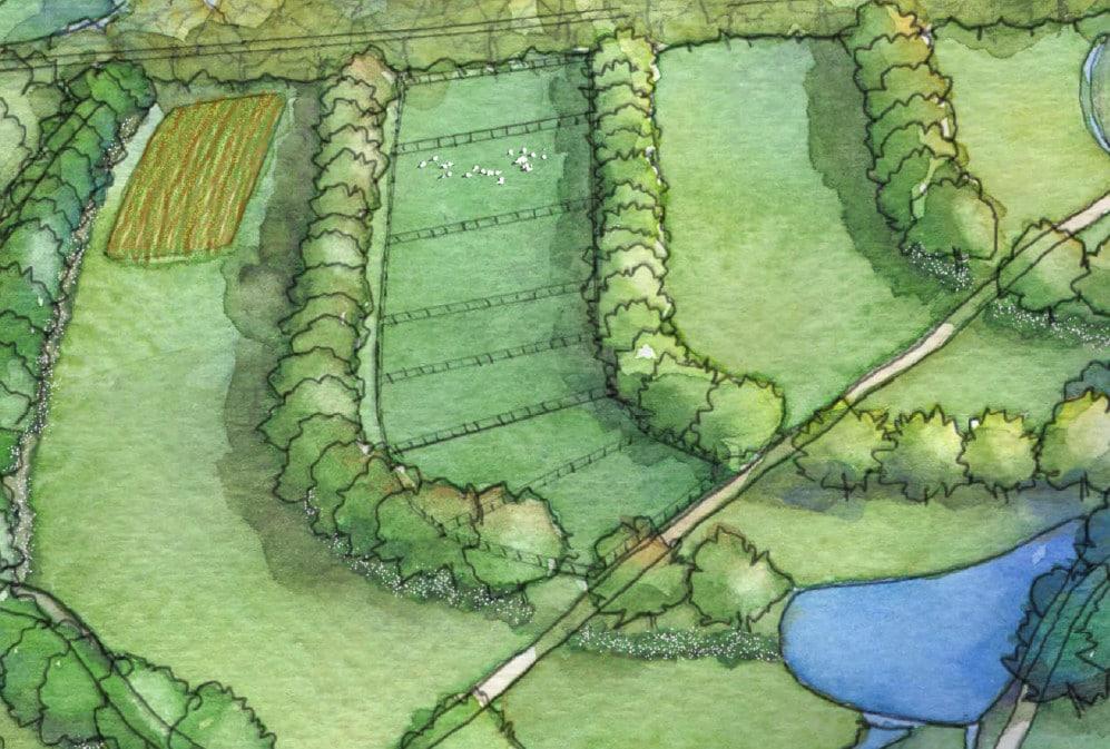 Planejamento da fazenda e plano de manejo sustentável