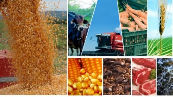 produtos agrícolas no Brasil