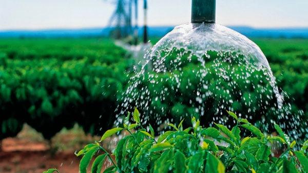 Água: importante recurso para agricultura