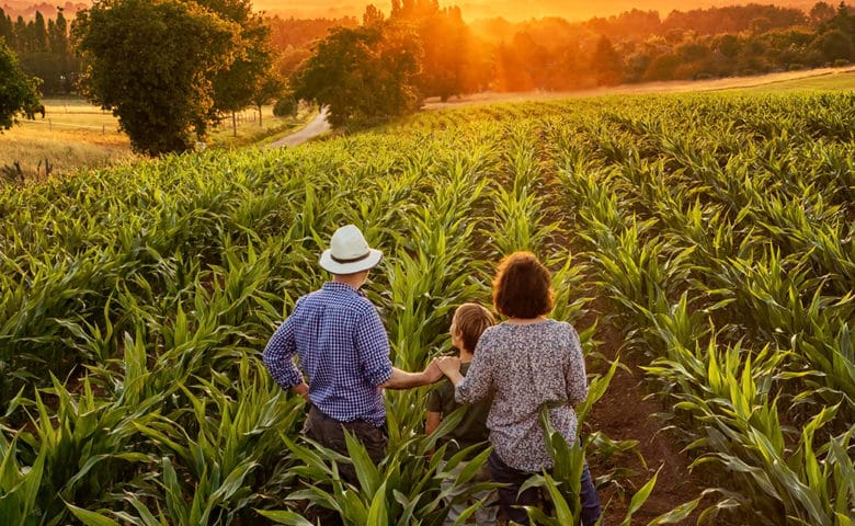 Tudo sobre Agricultura de subsistência