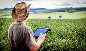 Agricultura digital: entenda o que é, vantagens e como fazer