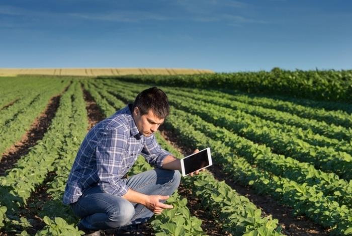 Saiba como o agrônomo contribui para o crescimento do agro