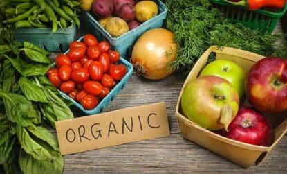 Agricultura orgânica e qual a sua importância no mundo